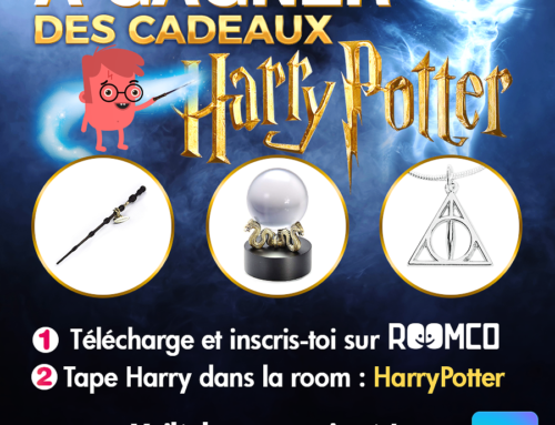 Grand Jeu Harry Potter